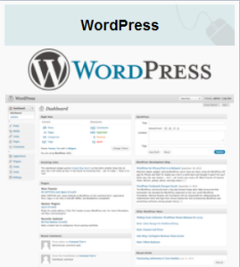 Wordpress y el SEO