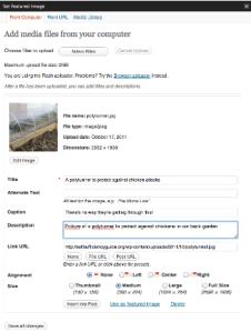 Operaciones básicas en WordPress