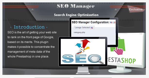 seo manager